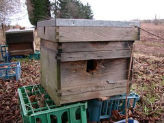 A wooden hive damaged by woodpeckers