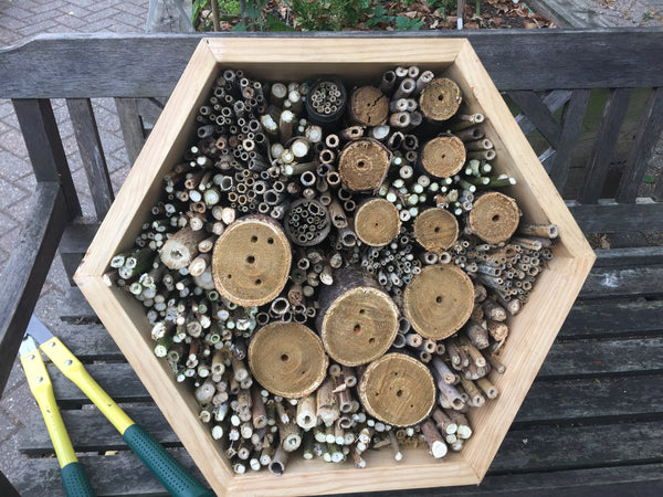 A large bee hotel filled with plant stems