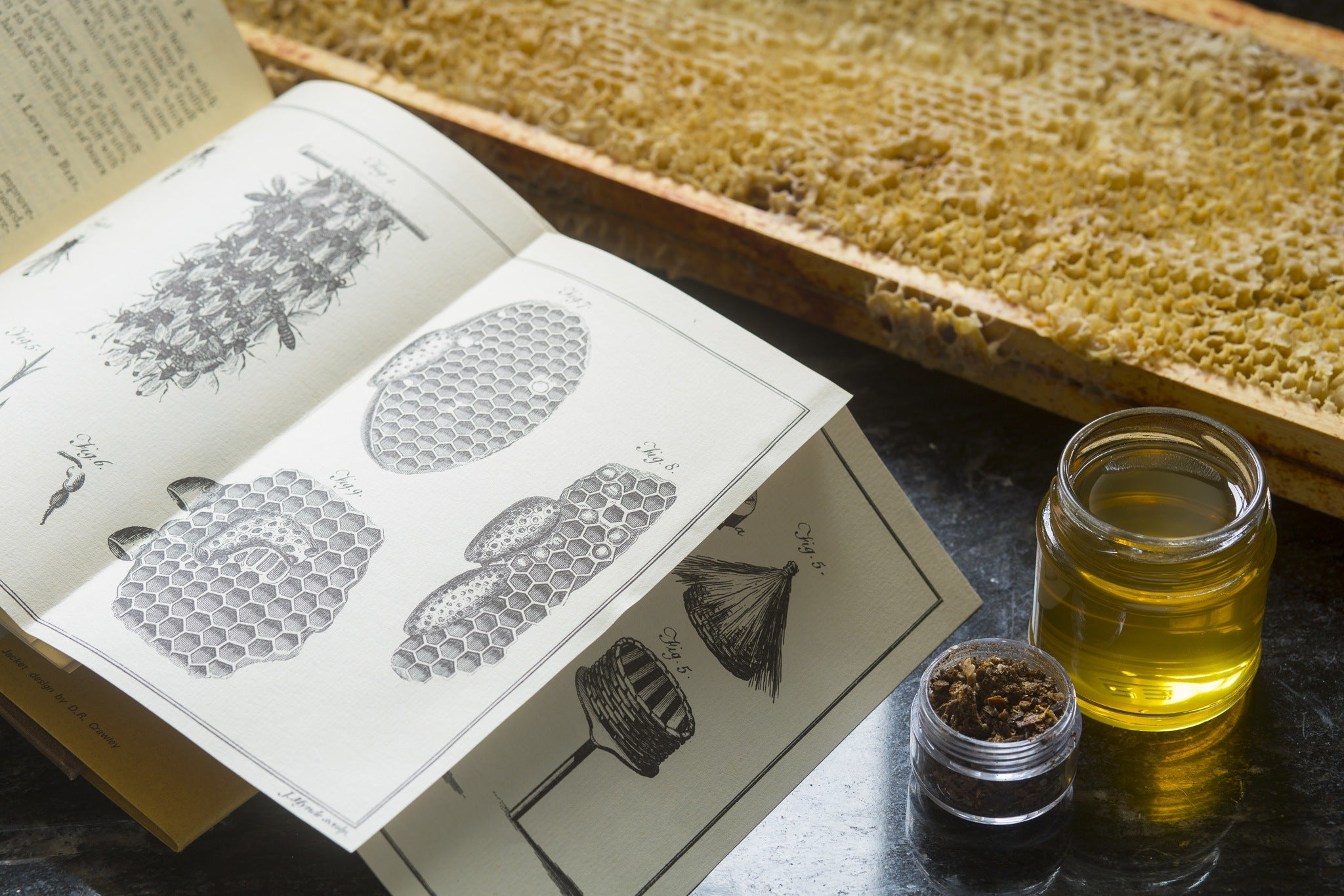 Vintage Book with Honey, Propolis and Beeswax