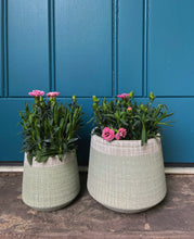Load image into Gallery viewer, Set of Sage & Grey Planters