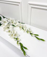 Load image into Gallery viewer, White Gladioli