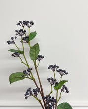 Load image into Gallery viewer, Viburnum Berry