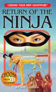 Choose Your Own Adventure: Return of The Ninja