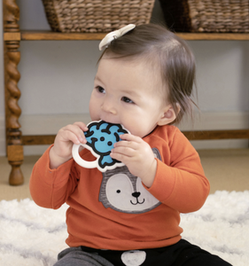 Brain Teether-Asst