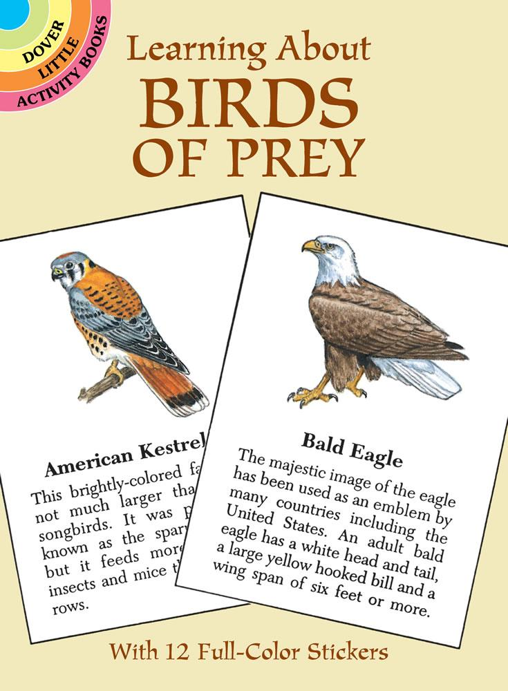 Learning About Birds Of Prey