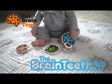 Load and play video in Gallery viewer, Brain Teether-Asst