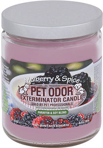Odor Exterminator Candle Mulberry and Spice
