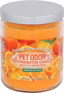 Odor Exterminator Candle Orange Lemon Splash