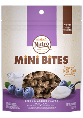 Nutro Mini Bites, Berry Treat 4.5oz