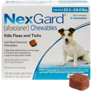 NexGard Chewable 6 Pack (Ground shipping only, 3-7 business days)