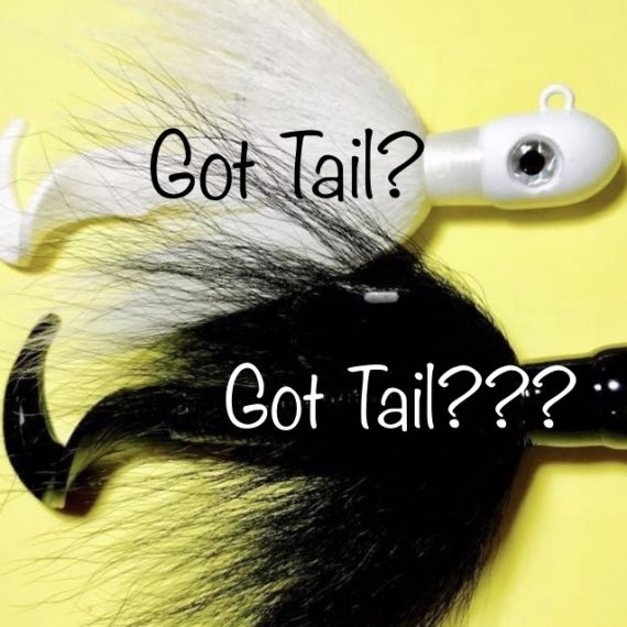 Day 18 - Got Tail?