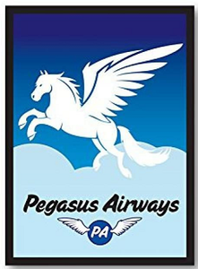 Legion Sleeves: Pegasus Air