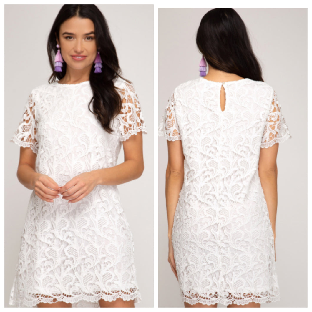 SHORT SLEEVE CROCHET LACE SHIFT DRESS WITH LINING