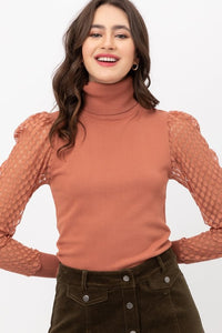 Sophie Turtle Neck Knit Top