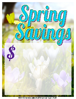 Sale Tags (Pk of 100): Spring Savings 1