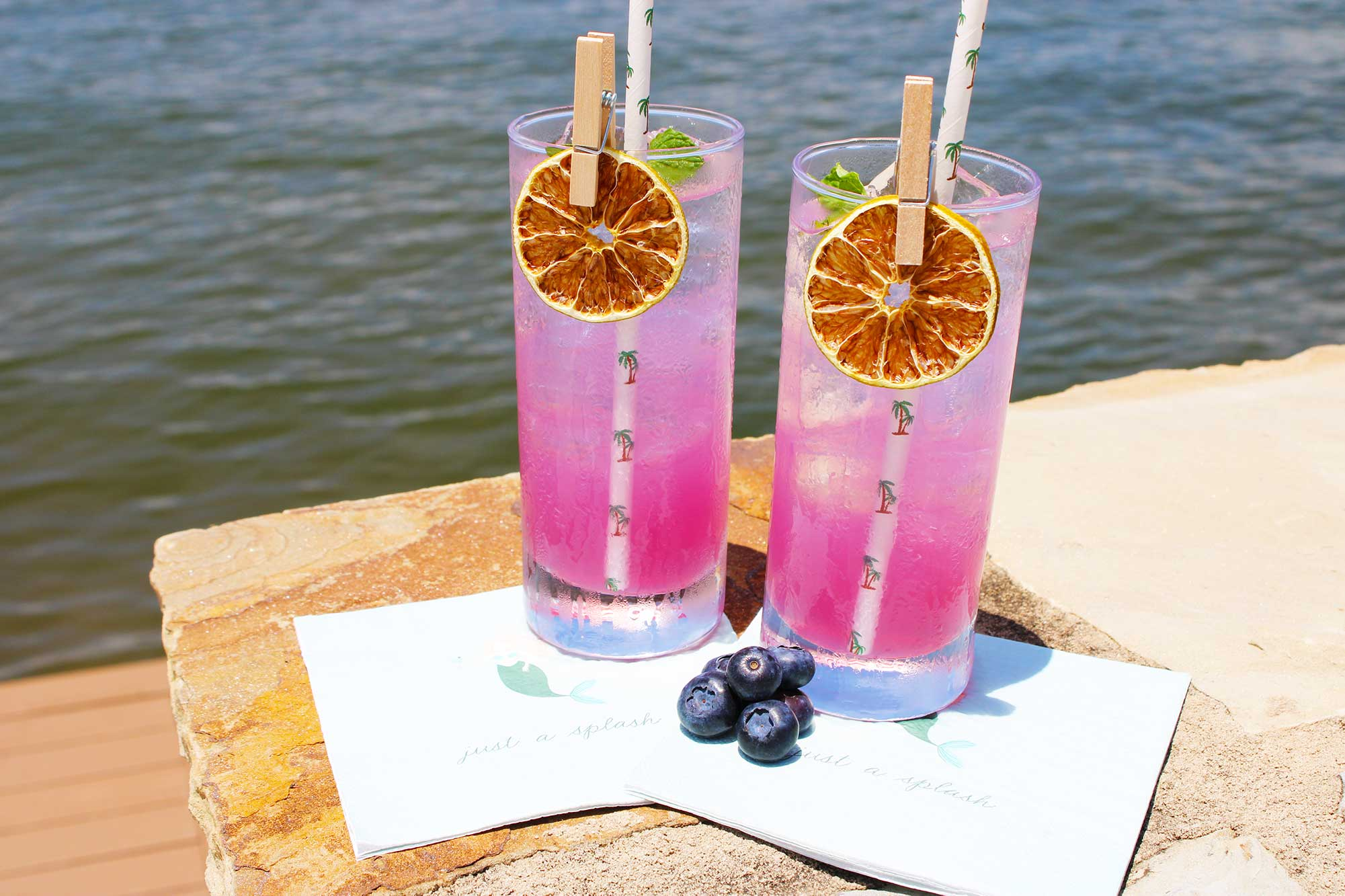 Blueberry Mojito (8 Cocktails)