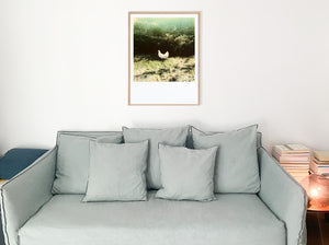 Polaroid-large-format-dove-room-deco