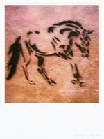 Load image into Gallery viewer, Impression Polaroid grand format Cheval Italie Sienne