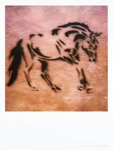 Impression Polaroid grand format Cheval Italie Sienne