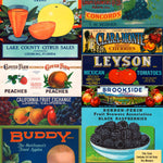 MRV-08 Crate Labels Fruit & Vegetables-v1-HiRes Swatch Crop Shopify.jpg