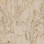 PHM-60A Marble Beige No Joints SIM Shopify.jpg