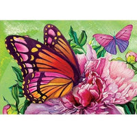 Colorful Butterfly Diy Paint By Numbers Kits PBN97918