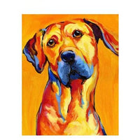 Dog Diy Paint By Numbers Kits PBN57812