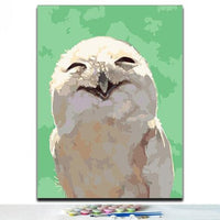 Owl Diy Paint By Numbers Kits PBN97619