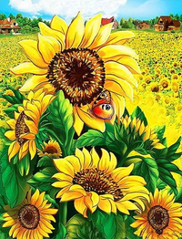 Sunflower Diy Paint By Numbers Kits PBN90568