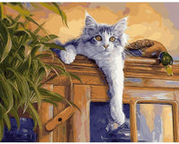 Cat Diy Paint By Numbers Kits PBN52183