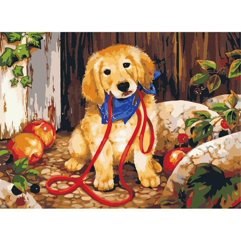 Dog Diy Paint By Numbers Kits PBN54159