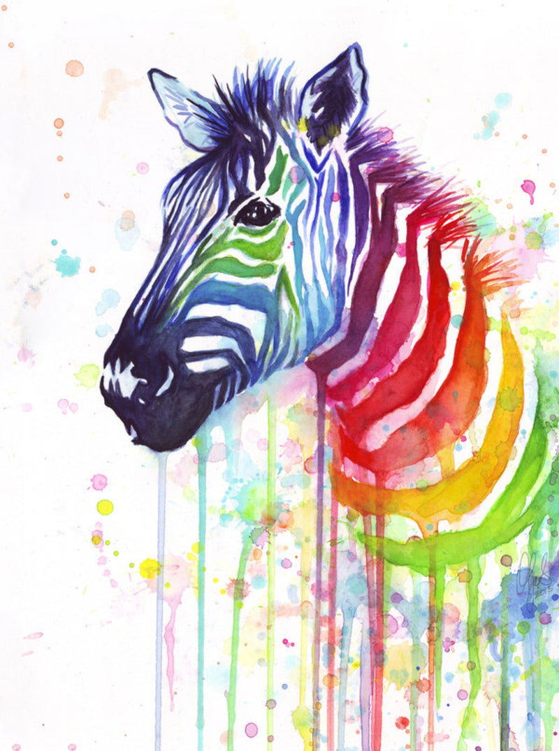 Animal Zebra Diy Paint By Numbers PBN90459