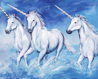 Unicorn Diy Paint By Numbers Kits PBN95402