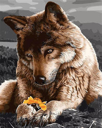 Animal Wolf Diy Paint By Numbers Kits VM91625