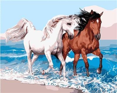 Horse Diy Paint By Numbers Kits PBN50255