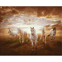 Horse Diy Paint By Numbers Kits PBN91437