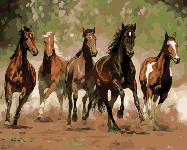 Horse Diy Paint By Numbers Kits PBN92393