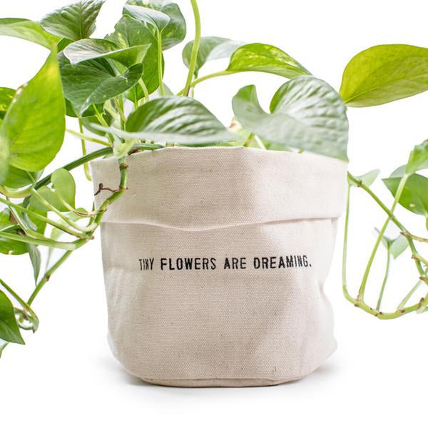 """Tiny Flowers Are Dreaming"" Canvas Planter"