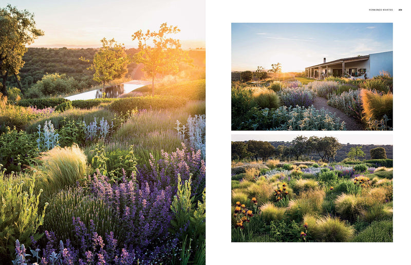 Dreamscapes: Inspiration and Beauty in Gardens Near and Far