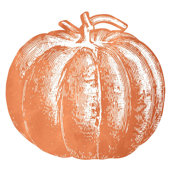 HESTER & COOK Die Cut Pumpkin Placemats