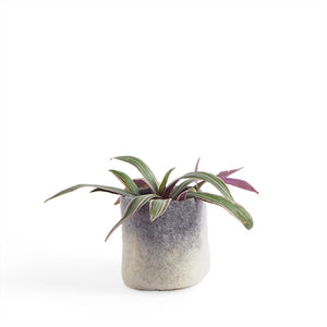 Flower Pot Small - Concrete Two-Tone