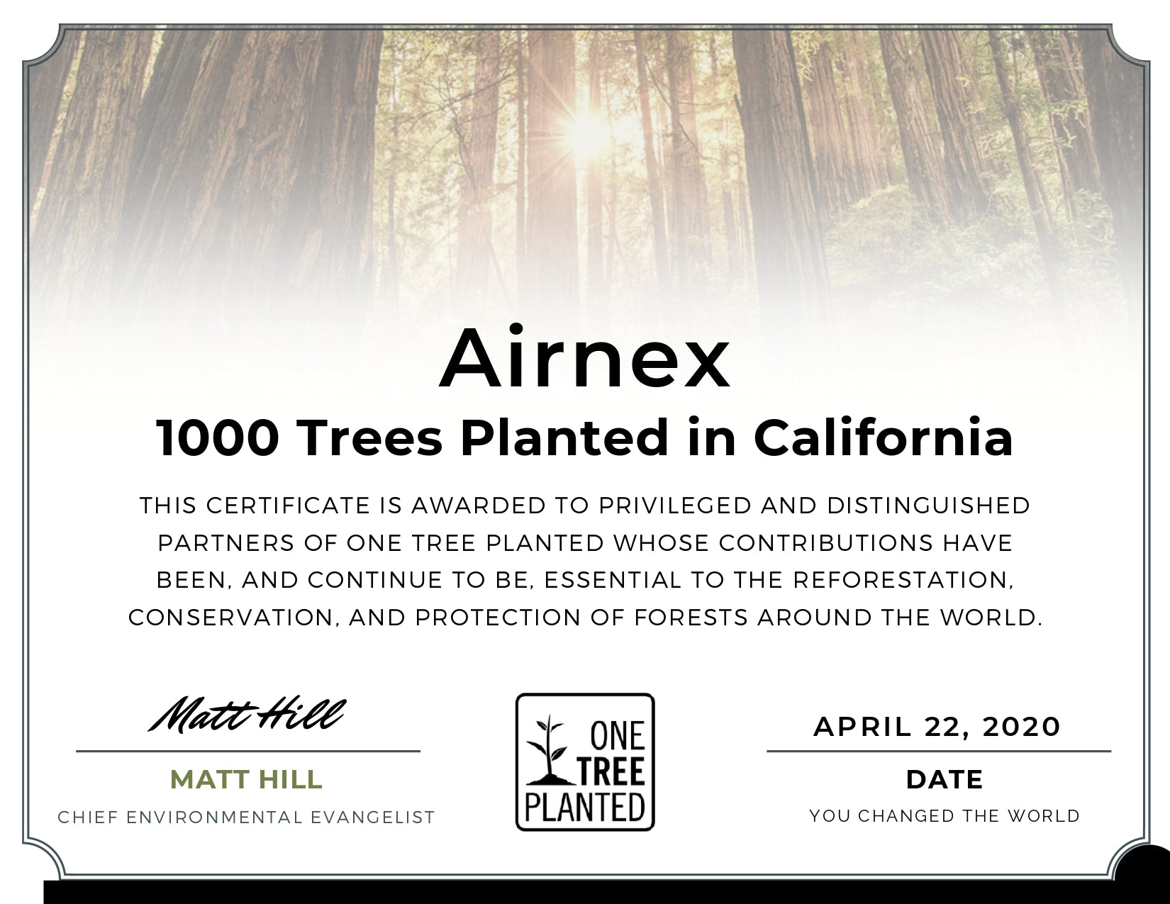 Airnex one thousand trees planted