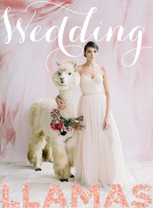 Llove Is In The Air... Furry Wedding Guests (a.k.a. The Wedding Llamas)