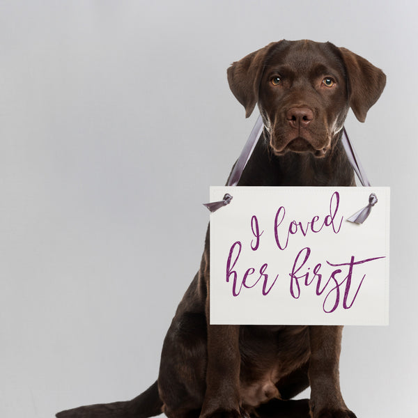 I loved her first dog sign