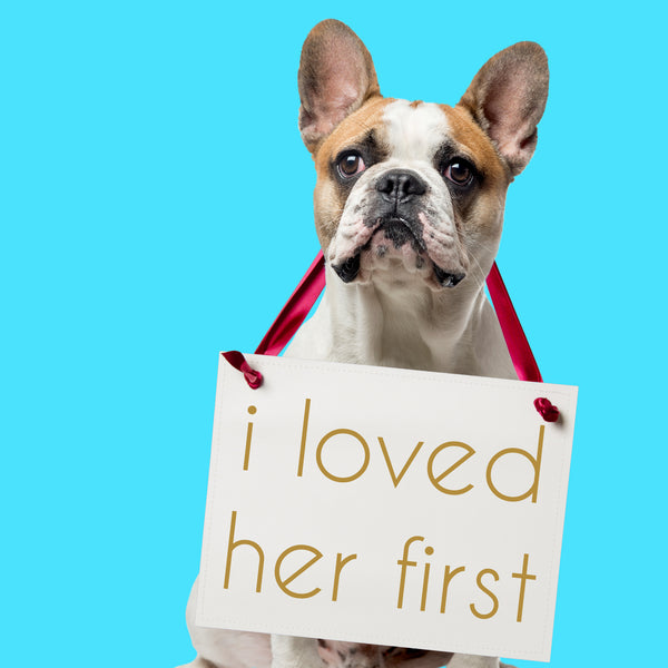 I loved her first dog wedding sign good morning america