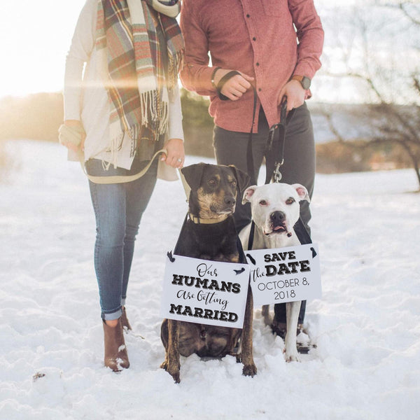 Save the date our humans are getting married