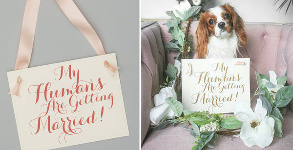 Pretty my humans are getting married dog signs for wedding announcement