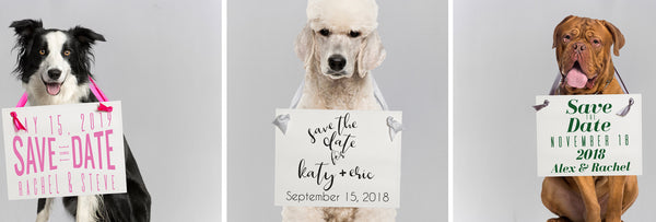 Dog save the date signs