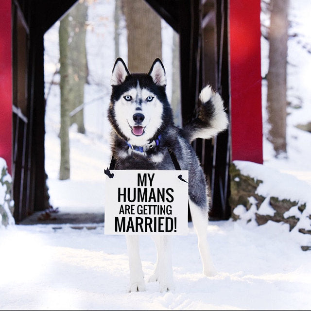 My humans are getting married wedding sign