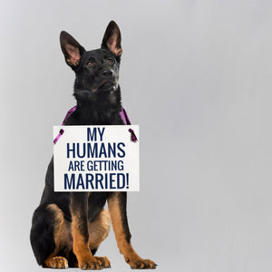 My Humans Are Getting Married Dog Save The Date